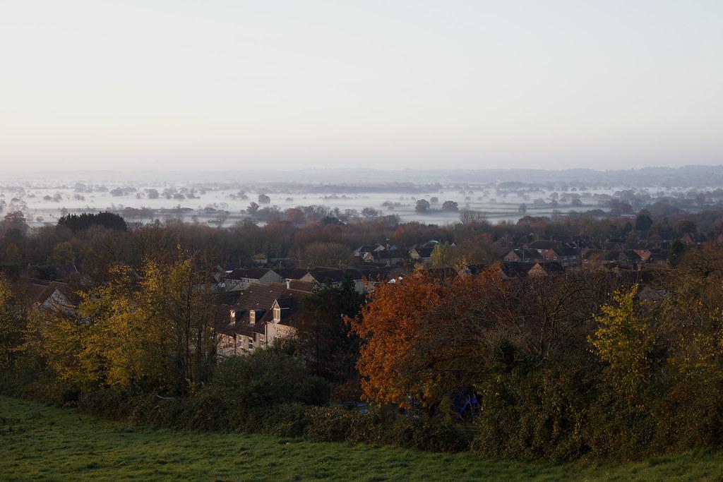 Morning Dew On The Marsh.