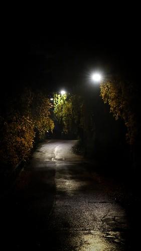 November darkness at 5 pm - November 9, 2018 | by EmmaSofia72