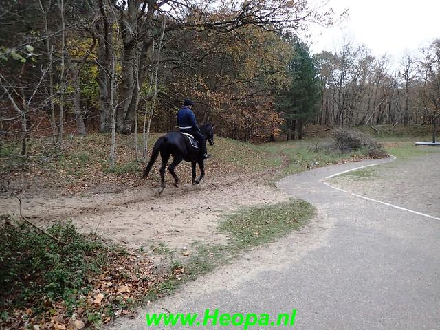 2018-11-21              Bloemendaal         25 km    (132)