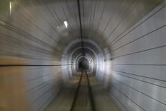 山王トンネル(お座トロ展望列車の展望席から撮影)