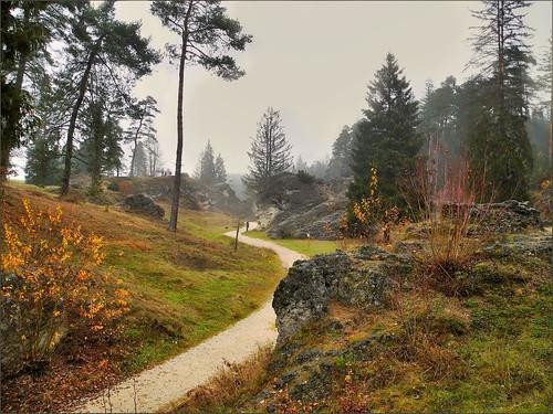 Wental | by almresi1