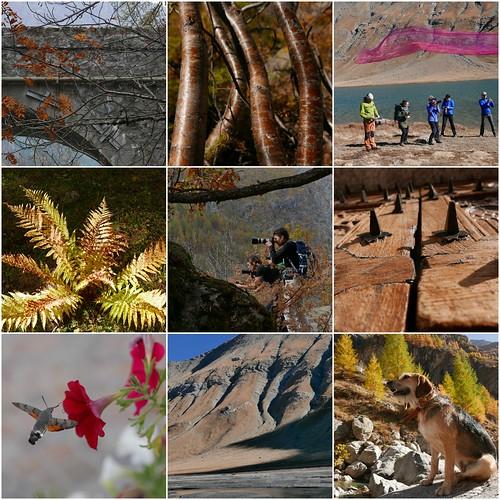 Themareis fotografie Haute Alpes