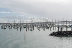315.364.2018 Auckland Harbour Marina, New Zealand