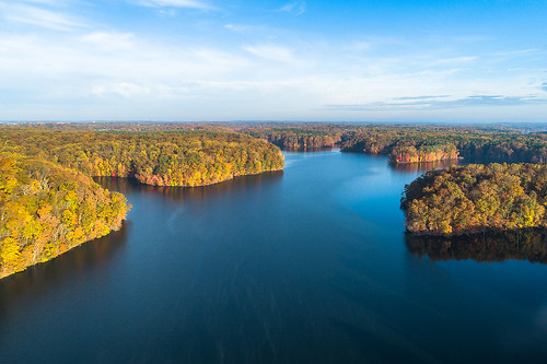 maryland libertyreservoir libertylake reservoir november autumn fall dji phantom4pro aerialphotography dronephotography aerial forest woods park