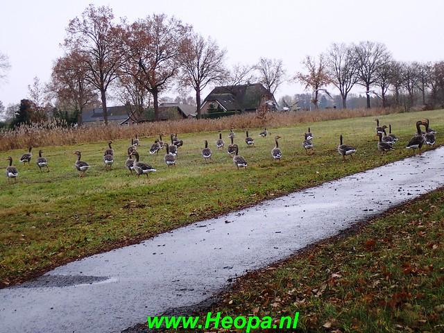 2018-11-28   Vaassen 25 km  (111)