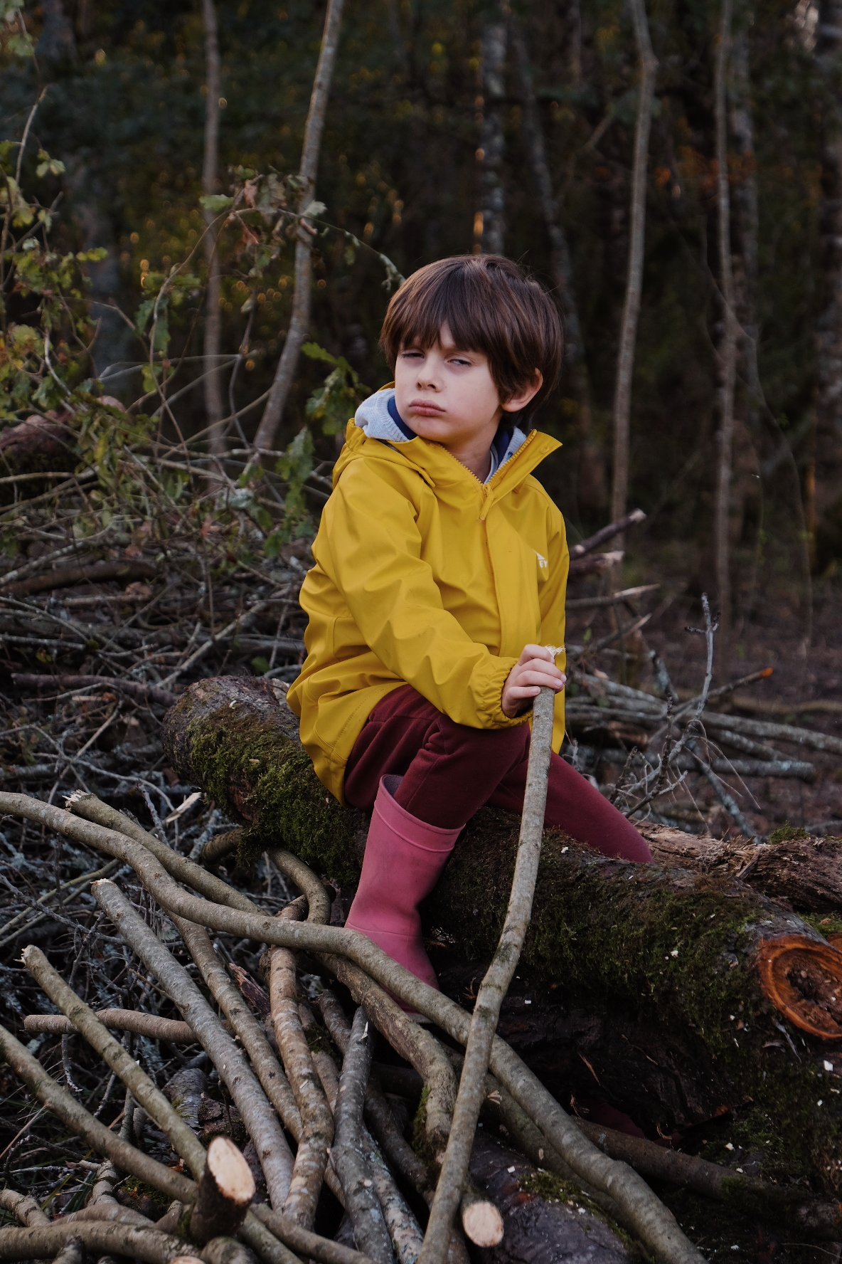 2018 11 03 Balade en forêt