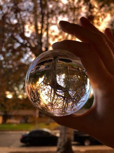 shadowpines sunset tree crystalball reflection