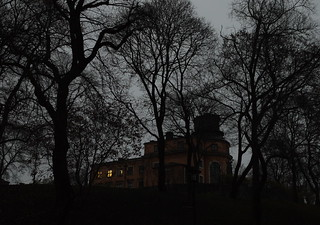 November daylight | by nilsw