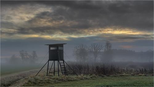 deutschland germany bayern bavaria augsburgwestlichewälder schmuttertal landscape trees sky clouds fog sunrise colors canoneos