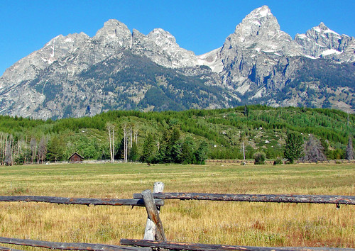 Grazing in Grandeur, Grand Teton NP 2011 | by inkknife_2000 (10.5 million + views)