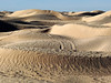 Festival International du Sahara, saharské duny, foto: Petr Nejedlý