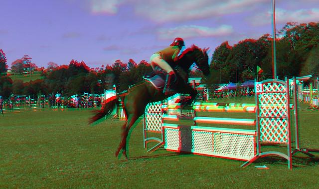 RC_sport_horsejump_mlnyshw2017_20170603-115051.jpg
