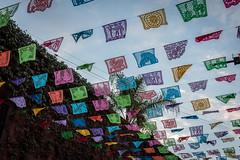 Day of the dead San Miguel de Allende, Mexico