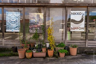 Nikko is Nippon   by FlickrDelusions