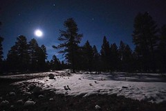 The moon on the breast of the new fallen snow gave the luster of midday to objects below...
