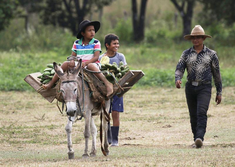Llaneros Ascanio_Colombia Llanos 199A1507