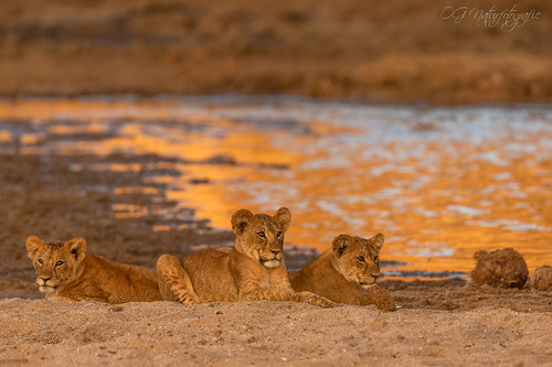 Youngsters hanging out by the river | by Oliver Geiseler