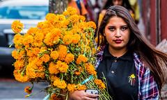 2018 - Mexico - Morelia - Marigold Bouquet