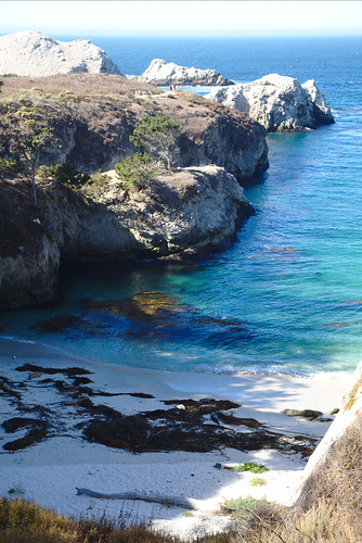 Inlet, South Shore trail, Point Lobos | by aenigmatēs