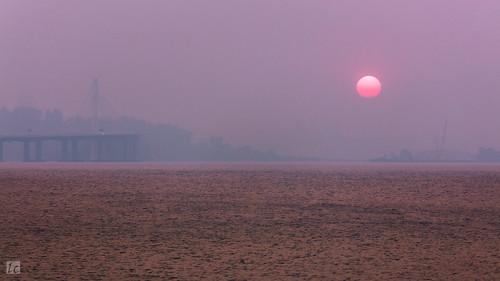 sunset sfbayarea sanfrancisco sanfranciscobayarea smoke paradisefire fire northerncalifornia sky pinksky sun water bay baybridge baybridgeeasternspan