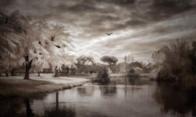Legg Lake Winter - Textured IR Duotone