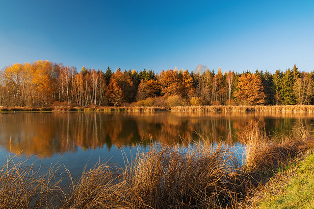 Teichgebiet Wolche  (8)