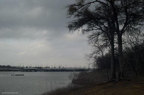 tamronadaptall202b lake marina gloom sky bleak trees landscape