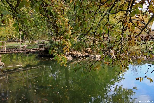 El Mansoura - Lebanon West Bekaa #nature_photography #nature #naturelovers #photography #photographyoftheday #pic #capture #beauty #flickr #explore #river #autumn #landscape_photography