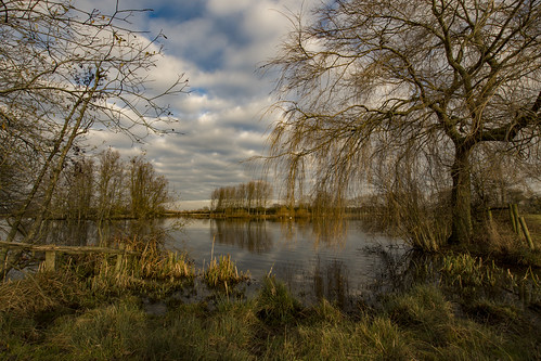 nikon sigma 1020mm d7200 cossington leicestershire trees water lakes landscape