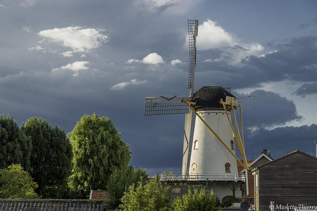 Moulin de  Wemeldinge