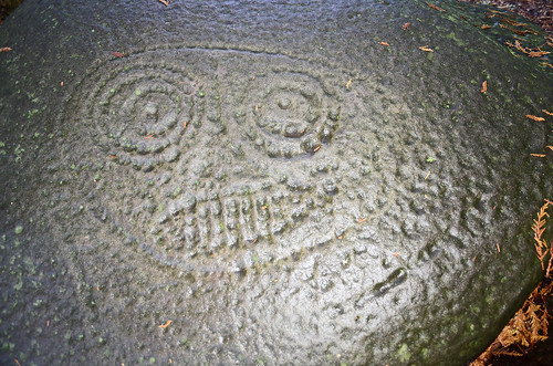 The Fulford Harbour Petroglyph +/- 1m wide