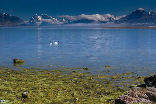 Puerto Natales | by maticallone