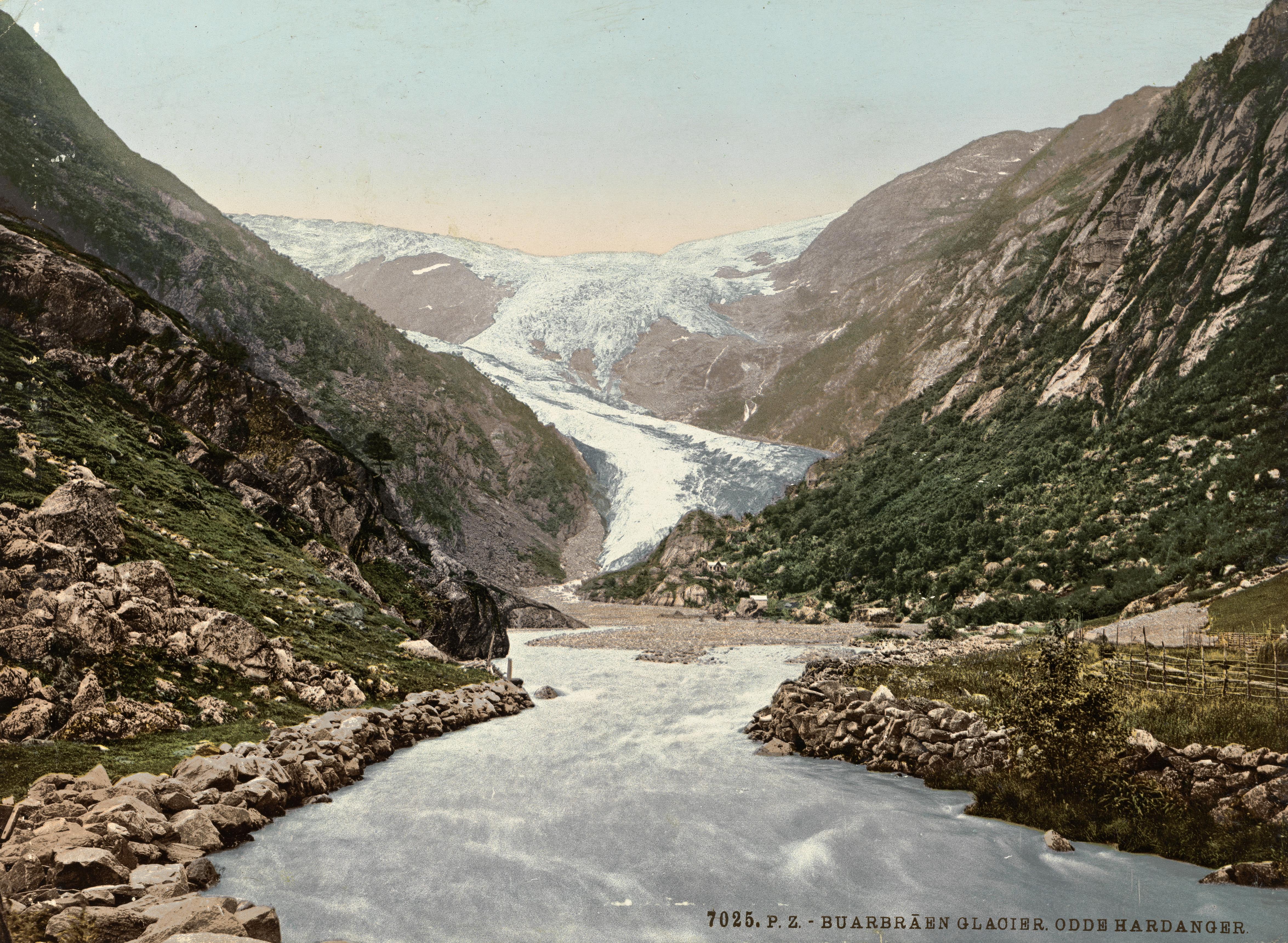 7025. P. Z. Buarbraen Glacier. Odde Hardanger