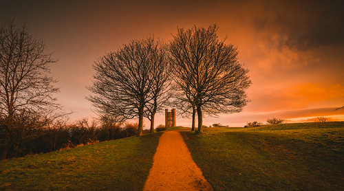 hill sky branches nationaltrust dxo branch beacon horizon snowshill sunrise lightroom sunup tower worcestershire british historic dawn folly sun high green wildlife fields sunshine footpath architecture yellow top track summit red d7100 detail broadway rise clear nikon walking fishhill goldenhour hilltop castle golden beautiful nature light cotswolds cotswoldway blue countryside exposure landscape