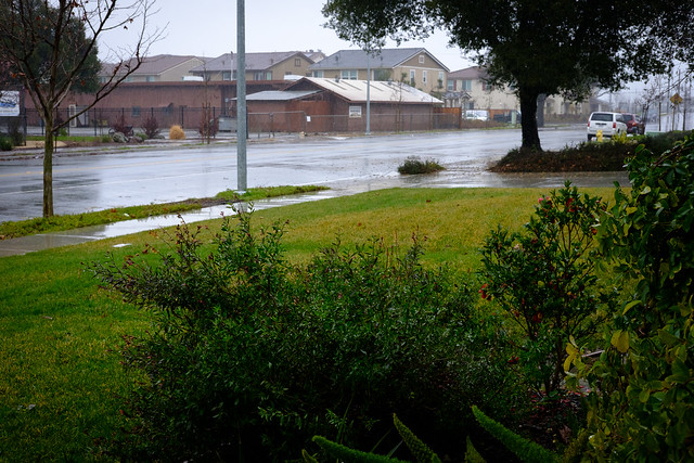 Rain 1560