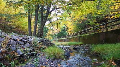samsunggalaxys6edge fall autumn autumnfoliage fallfoliage smartphone lepperbrook truro colchestercounty water trees fallenleaves