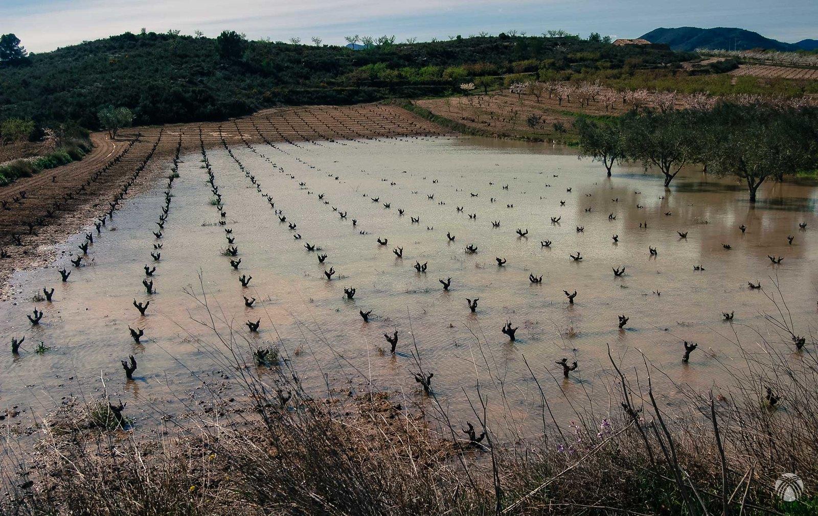 Las fuertes lluvias inundan los campos pero no afectan a la vía verde