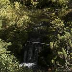 Feeder streams