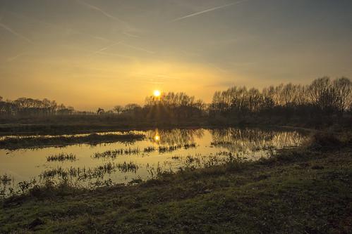 sunset sonnenuntergang herbst wasser wald teich himmel autumn water forest pond sky