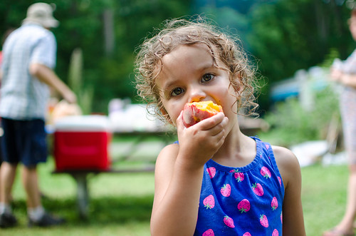 20160820-Camping-0082 | by auley