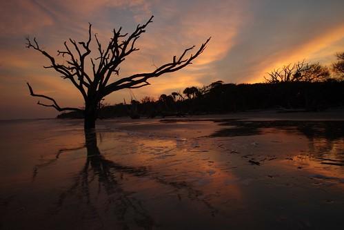 ocean sunset summer sky seascape reflection tree beach sc nature wet beautiful silhouette evening sand colorful pentax southcarolina atlantic botanybay f8 15mm boneyard fiery 2014 edistobeach k5ii