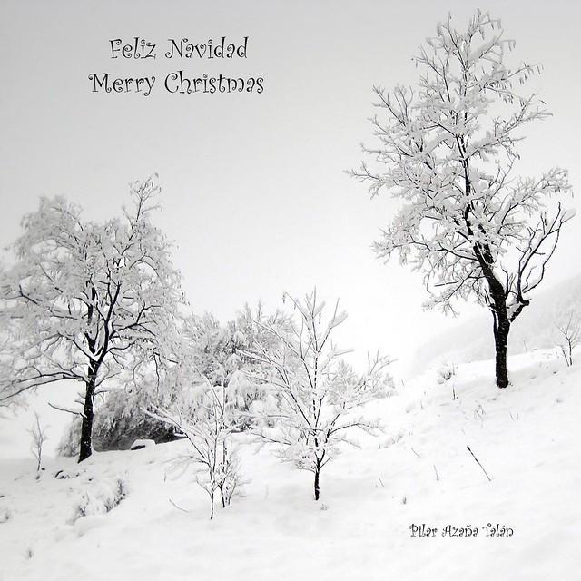 ☆ FELIZ NAVIDAD ☆ MERRY CHRISTMAS ☆
