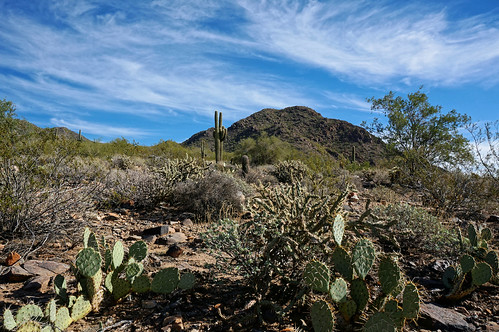 arizona scottsdale mcdowellsonoranpreserve sunrisepeak sunrisetrail cactus clouds christmas2016