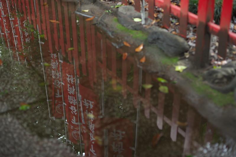 東京路地裏散歩 上野 下谷神社 2015年7月5日