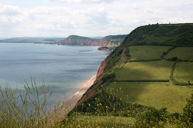 View from Higher Dunscombe Cliff