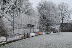 winter-2017-17