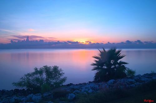 water sunrise galvestonbay