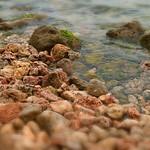 coral reef 小琉球珊瑚礁