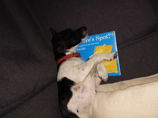 Bedtime reading | by Iain Farrell