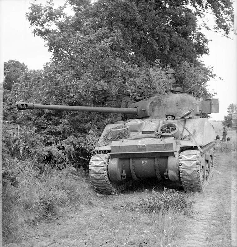 Sherman Firefly tank alongside a hedge